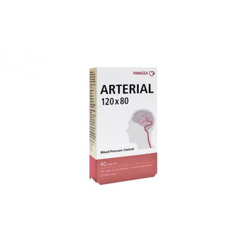 Купить Артериал